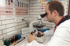 Tierarzt vor dem Mikroskop