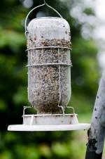 Futterspender für Vögel