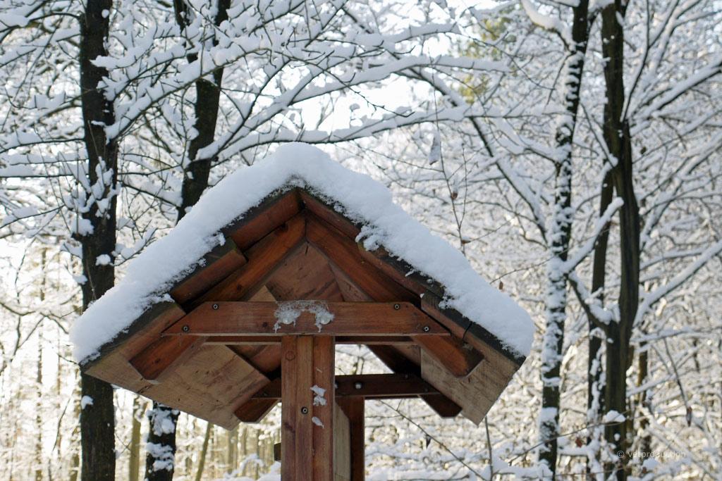 das vogelhaus was brauchen wildv gel im winter. Black Bedroom Furniture Sets. Home Design Ideas