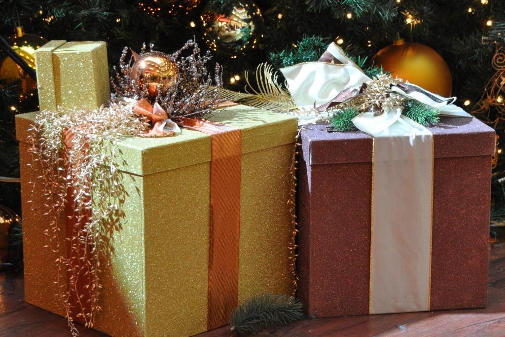 die 5 besten weihnachtsgeschenke f r ihren hund tiermedizinportal. Black Bedroom Furniture Sets. Home Design Ideas