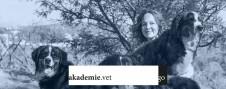 go_akademie-vet_hundezucht_web_full
