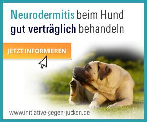 hund cytopoint spritze erfahrung