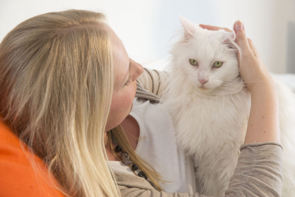 Weiße Katze auf dem Arm einer Frau