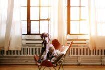 Hund im Sessel (Foto: Pixabay.com)